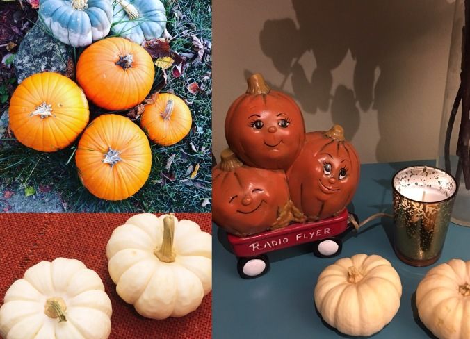 2017-10-31 Pumpkin Habits
